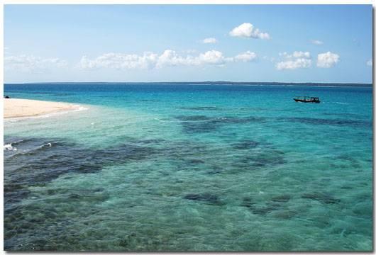 桑给巴尔岛由两座主要岛屿安古迦岛和奔巴岛.