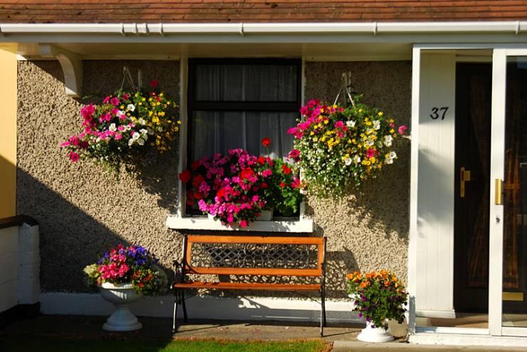 每个小院子都是鲜花入锦的装饰小花园